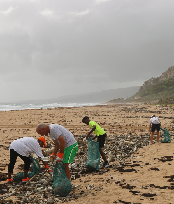 A project for cleaning up a beach from garbage